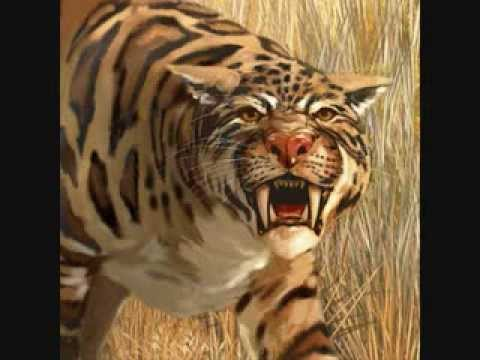 Top 10 Most Dangerous Prehistoric Animals (NO DINOSAURS)