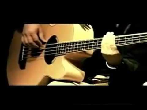 Steven & Coconut Treez - Never Let Go [Live]