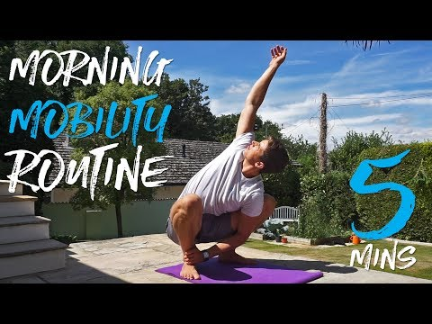 5 Minute Morning Mobility Routine!