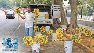 Exchofer de AMLO ahora vende flores y espera justicia de la 4T