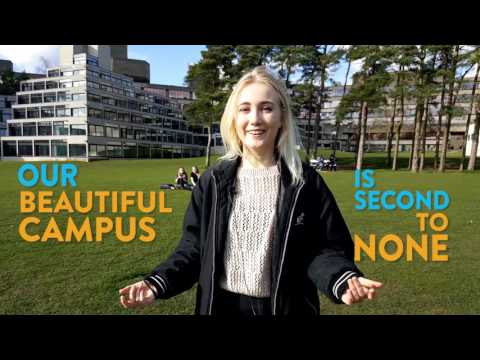 9 Reasons to Come to a UEA Open Day | University of East Anglia (UEA)