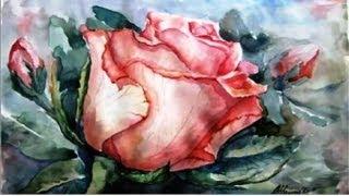 КАК научиться РИСОВАТЬ  Прекрасная РОЗА акварелью(Бесплатный 2-х недельный курс рисования для всех желающих быстро научиться рисовать Курс №1