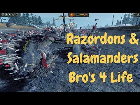 Razordons & Salamanders = Bro's 4 Life. Lizardmen Vs Tomb Kings. Total War Warhammer 2 Multiplayer