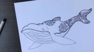 Como hacer ballena con mandala, paso a paso | How to draw mandala Whale Step by Step, speed draw