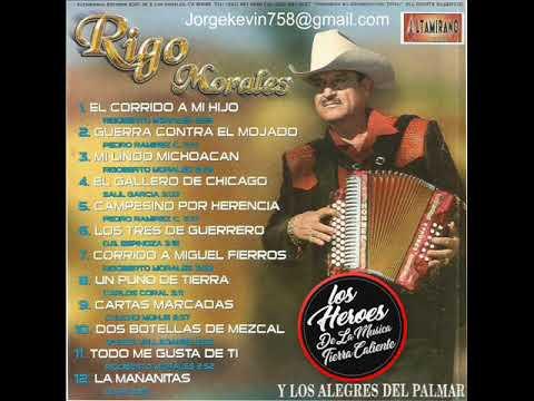 El Corrido A Mi Hijo(Albun Completo)Rigo Morales Y Los Alegres Del Palmar