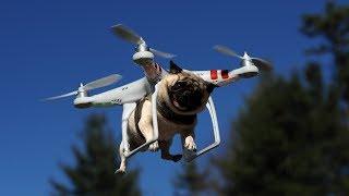 CAIDAS DE DRONES - RECOPILACIÓN VIDEOS GRACIOSOS CON DRONES..!
