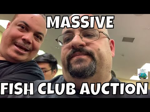 MASSIVE FISH AUCTION!! North Jersey Aquarium Society Tropical Fish Auction 2019