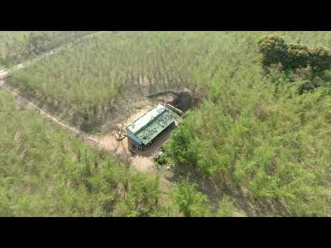 BISJ Pushpinder Organic Bamboo Farm