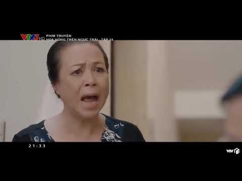 Hoa Hồng Trên Ngực Trái Tập 24    Bản Chuẩn VTV3    Full HD