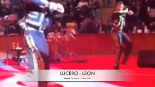 LUCERO - Palenque León
