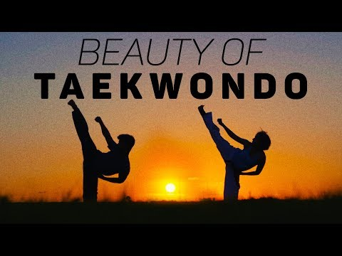 The Beauty of Taekwondo – 2017 Motivational Training