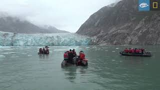 It's Pretty Nice Here | Alaska | Lindblad Expeditions-National Geographic