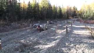 25th Infantry Division Obstacle Course at Fort Wainwright, Alaska