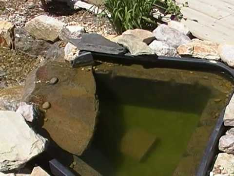 algae-in-a-calgary-pondless-waterfall.mp4