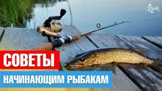 Советы начинающим рыбакам Shorts