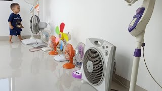 Desk fan and stand fan collection | Kipas angin koleksi Ray | quạt