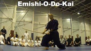 Emishi-O-Do-Kai seminar 2013 Budapest by Sensei Shigeru Uemura