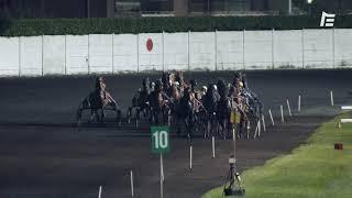 Vidéo de la course PMU PRIX DE L'AVENIR