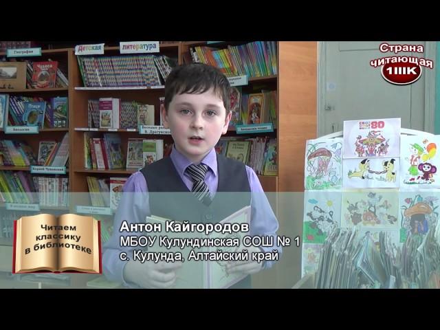 Изображение предпросмотра прочтения – АнтонКайгородов читает произведение «Славная осень» Н.А.Некрасова
