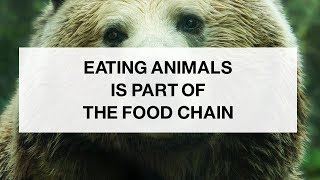 Humans Are at the Top of the Food Chain