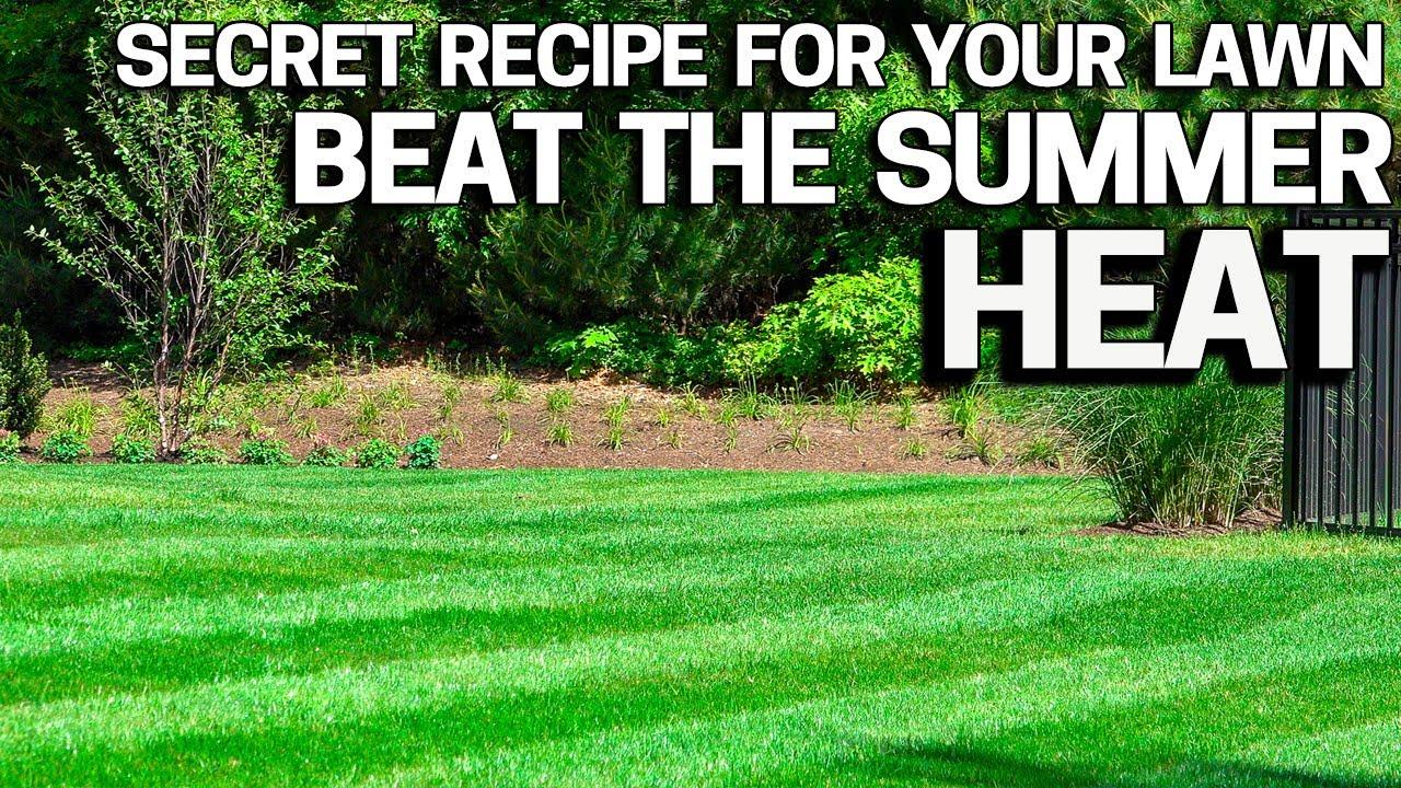Summer Heat & Stress my Secret Recipe