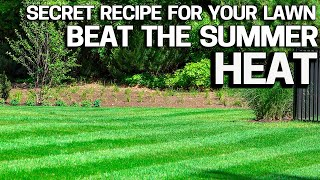 Protect your Lawn From Summer Heat & Stress with my Secret Recipe