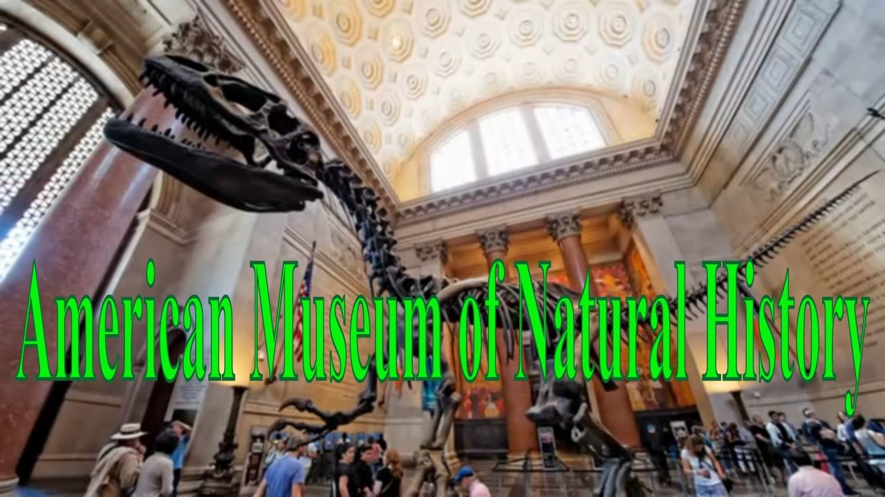 Visiting American Museum Of Natural History In New York United - Historical museums in usa