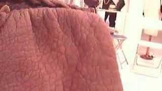 Borsa di elefante (lusso e vintage)