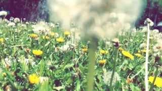 Giving Love to Nature - Spirit Nurturing: A Beauty Ritual Thumbnail