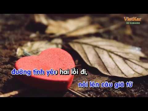 Những lời dối gian - Karaoke - Vietkar