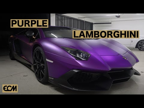 😈 PURPLE LAMBORGHINI 😈
