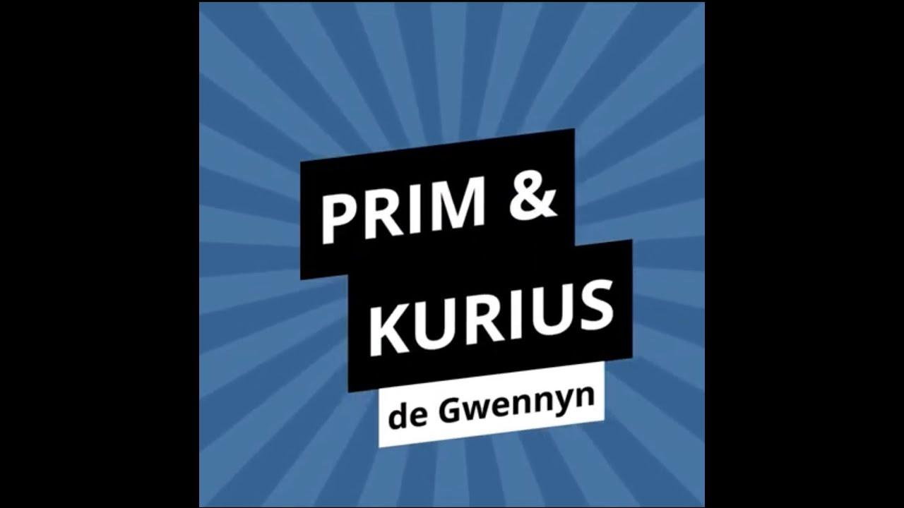 Interview PRIM & KURIUS #2 : Gwennyn