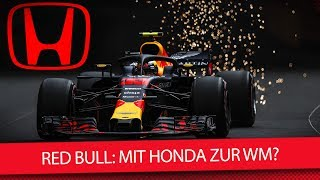 Formel 1 2019: Red Bull Mit Honda Zur Wm? (News)