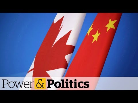 Canada Takes Canola Fight With China To WTO | Power & Politics