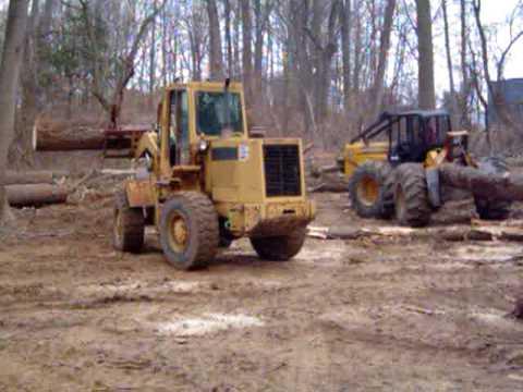 hardwood logging 1