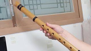 케나초 라는 악기를 선물받아 신나서 킨 방송