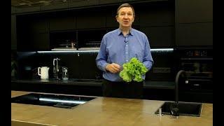 Салат листовой: посев, уход, сбор