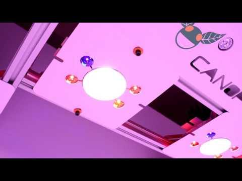 CANOPY 10: A Modular Lighting Solution By Growmau5 TEASER