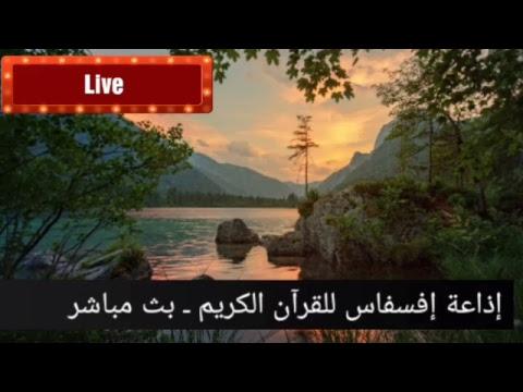 Coran en direct | القرآن الكريم بث مباشر/ Quran live/ سورة البقرة/surat al baqara