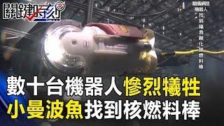 數十台機器人慘烈犧牲!「小曼波魚」終於找到福島核災鈾燃料棒!關鍵時刻 20171123-6 黃創夏