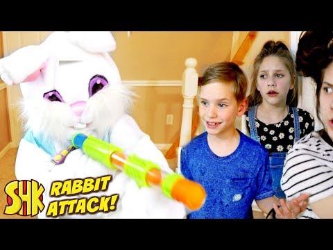 Movie Night Mischief: Rabbit Attack! with Peter Rabbit Movie
