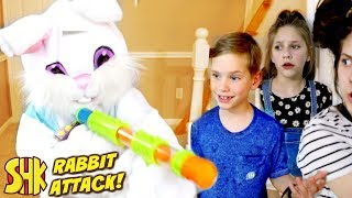 Movie Night Mischief: Rabbit Attack! with Peter Rabbit Movie