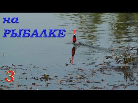 Рыбалка. Видео Зарисовки