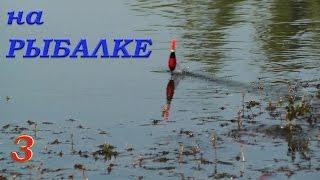 Рыбалка. Видео Зарисовки из моего канала. Ловля на поплавок и донку карася, тарани, окуня, сомика(Рыбалка. Видео Зарисовки из моего канала. Ловля на поплавок и донку карася, тарани, окуня, карпа, судака...., 2016-09-22T09:24:41.000Z)