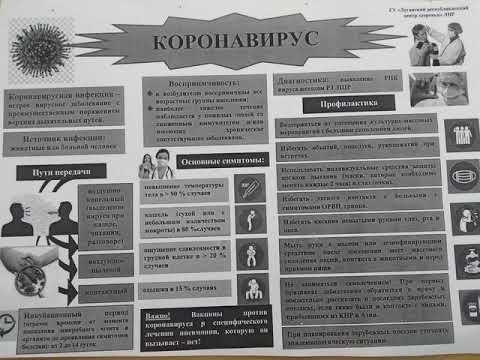 Вести плюс Луганск  Дмитрий Докашенко