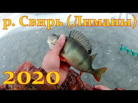 Рыбалка в Ленинградской области. Свирь (Лиманы) 2020г.