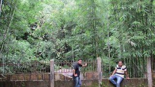 Mawlynnong Shillong Cherrapunjee or Sohra - Meghalaya - Halfway to Heaven - Incredible India