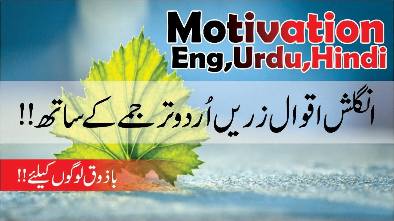 English Quotes Urdu Hindi Translation With Voice Best Aqwal E