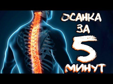 Вопрос: Как выпрямить спину?