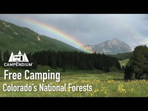 Free Camping In Colorado's National Forests